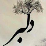 اهنگ جدید علی پارسا به نام به نام دلبر