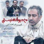 اهنگ محمدرضا هدایتی من دیوانه نیستم