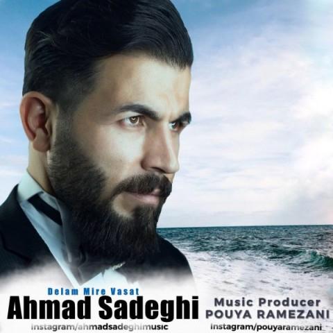 دانلود آهنگ دلم میره واست احمد صادقی