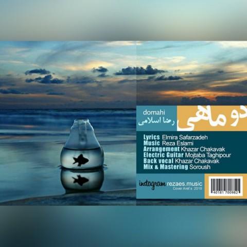 دانلود آهنگ دو ماهی رضا اسلامی