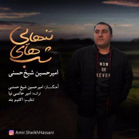 دانلود آهنگ شب های تنهایی امیرحسین شیخ حسنی
