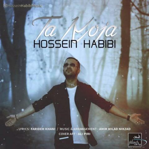 دانلود آهنگ تا کجا حسین حبیبی