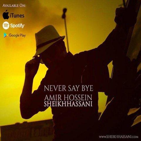 دانلود آهنگ هیچ وقت نگو خداحافظ امیرحسین شیخ حسنی