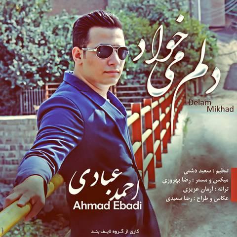 دانلود آهنگ دلم میخواد احمد عبادی