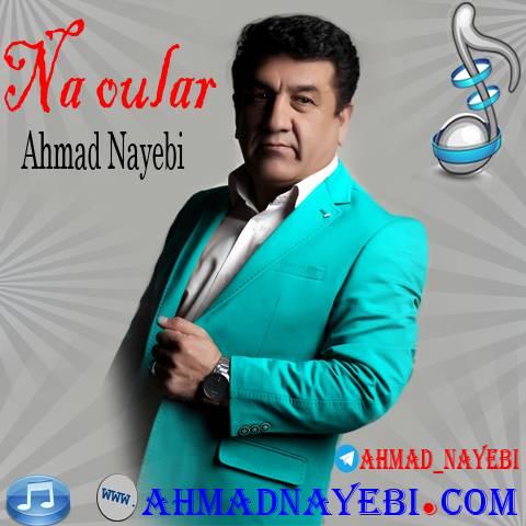 دانلود آهنگ نه اولار احمد نایبی