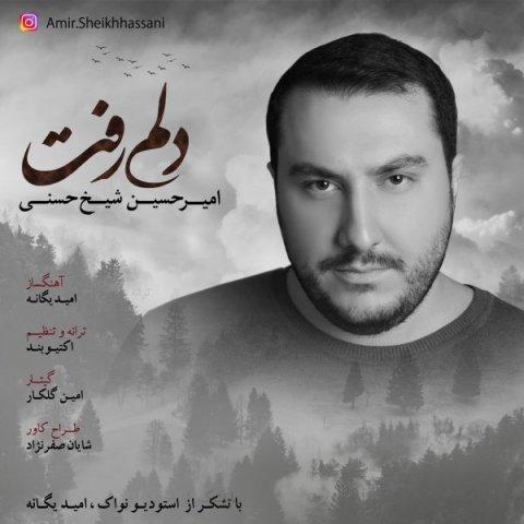 دانلود آهنگ دلم رفت امیرحسین شیخ حسنی