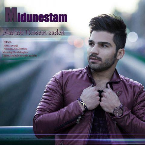 دانلود آهنگ میدونستم شهاب حسین زاده