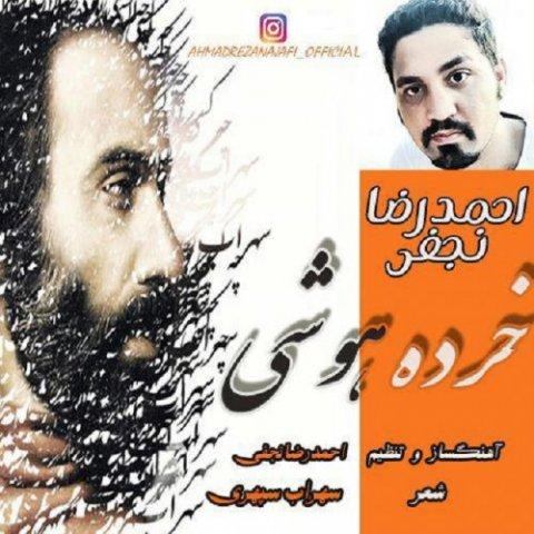 دانلود آهنگ خرده هوشی احمدرضا نجفی