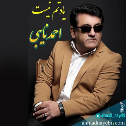 دانلود آهنگ یادتم نیست احمد نایبی