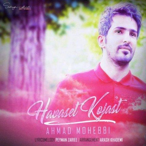 دانلود آهنگ حواست کجاست احمد محبی