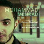 دانلود اهنگ محمد مهراد تو رو میخوام