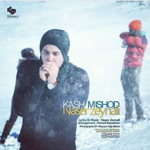 دانلود آهنگ کاش میشد ناصر زینلی