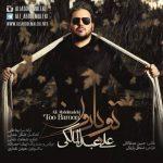 اهنگ جدید علی عبدالمالکی به نام تو بارون
