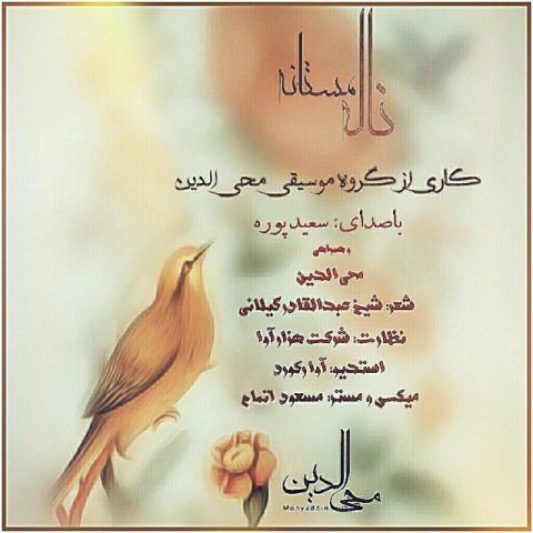 دانلود آهنگ ناله مستانه سعید پوره و محی الدین