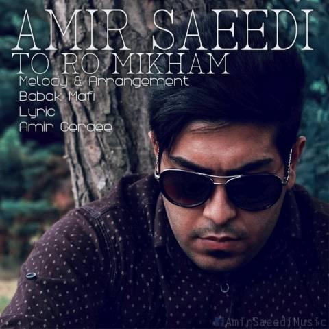 دانلود آهنگ تورو میخوام امیر سعیدی