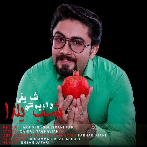 دانلود آهنگ شب یلدا داریوش شریفی