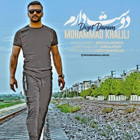 دانلود آهنگ دوست دارم محمد خلیلی