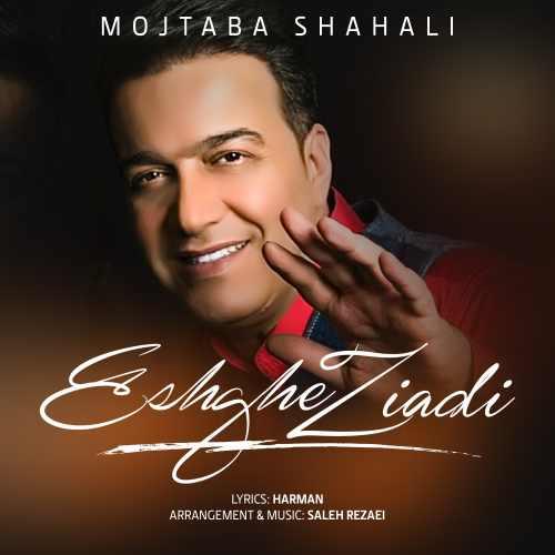 دانلود آهنگ عشق زیادی مجتبی شاه علی