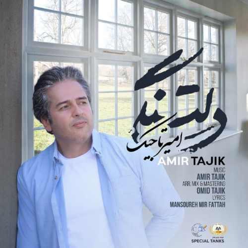 دانلود آهنگ دلتنگی امیر تاجیک